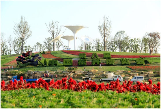 The 8th China Flower Expo
